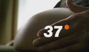 37º- Helfen ist die halbe Miete
